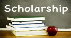 Download the scholarship application form